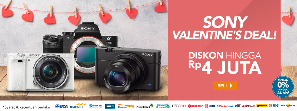 Sony Valentine's Deal