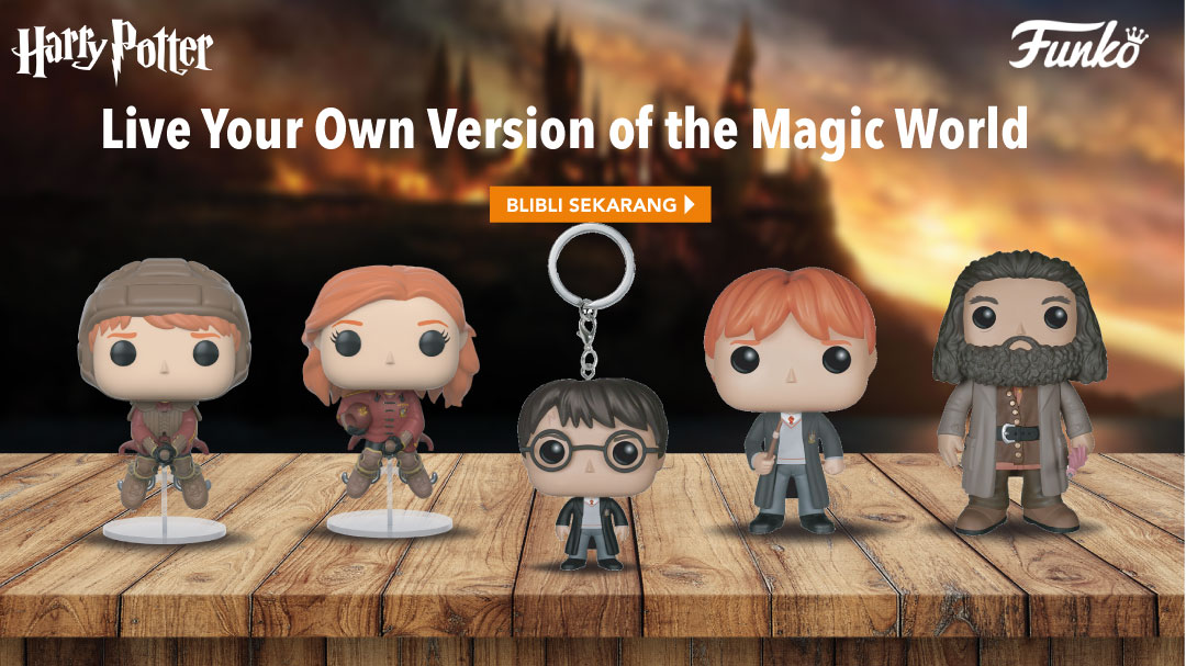 Character-Land Funko Harry Potter Series