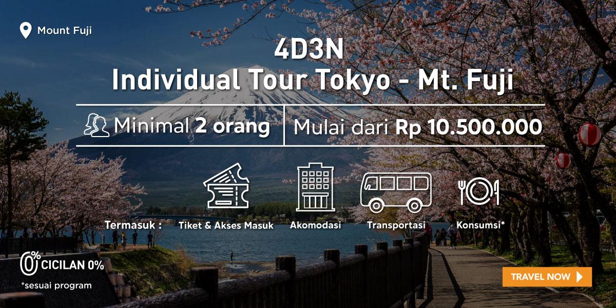 4D3N Tokyo - Mt. Fuji