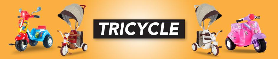 sepeda anak tricycle kick bike