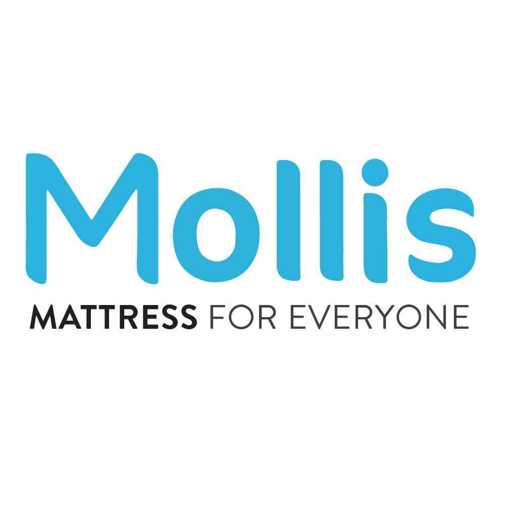 Mollis Smart Foam Pillow Bantal