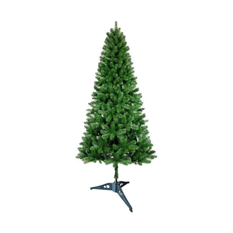 Cabang Pinus Natal Rotan Natal - Referensi Daftar Harga Terbaru ... - GT Flower
