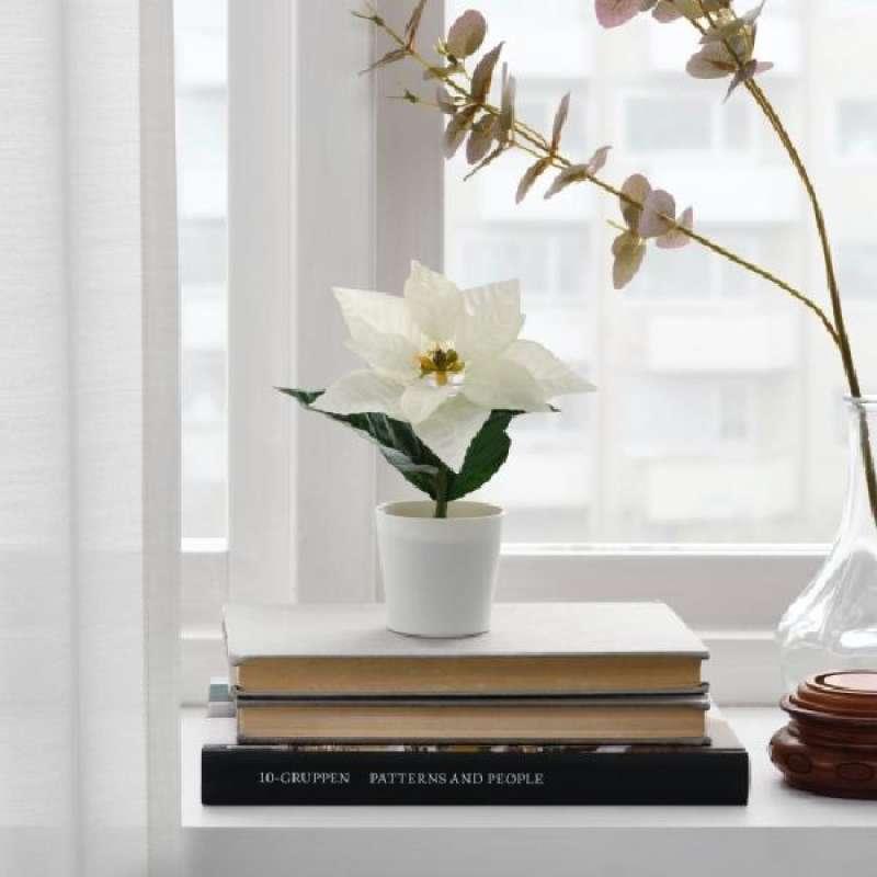 Jual Ikea Poinsettia Putih Tanaman Artificial Online Maret 2021 Blibli