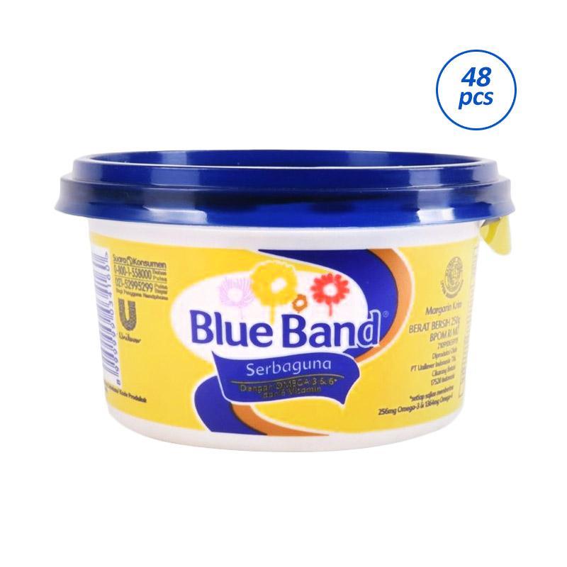 BLUE BAND Serbaguna Tube [250 g/ 48 pcs] 21035621