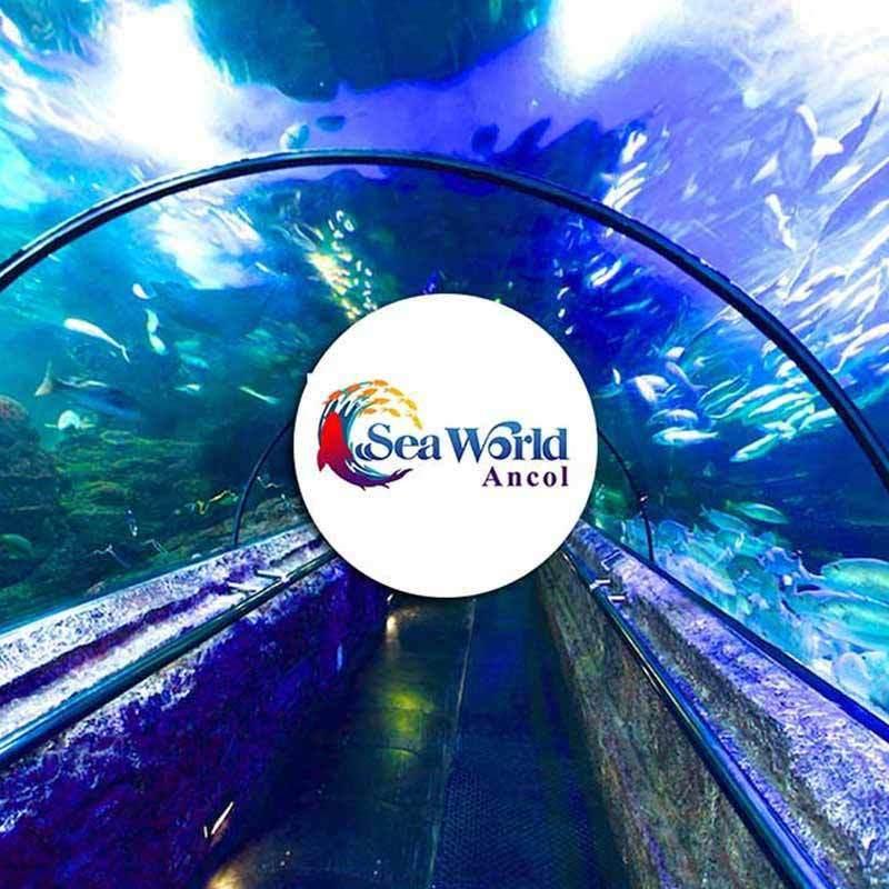 Jual Seaworld Ancol Annual Pass Ticket Murah Januari 2020