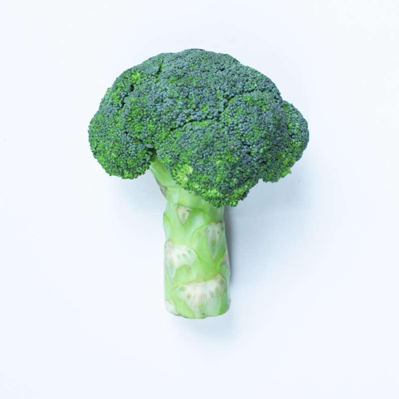 Bagikan facebook facebook mail Brokoli Organik
