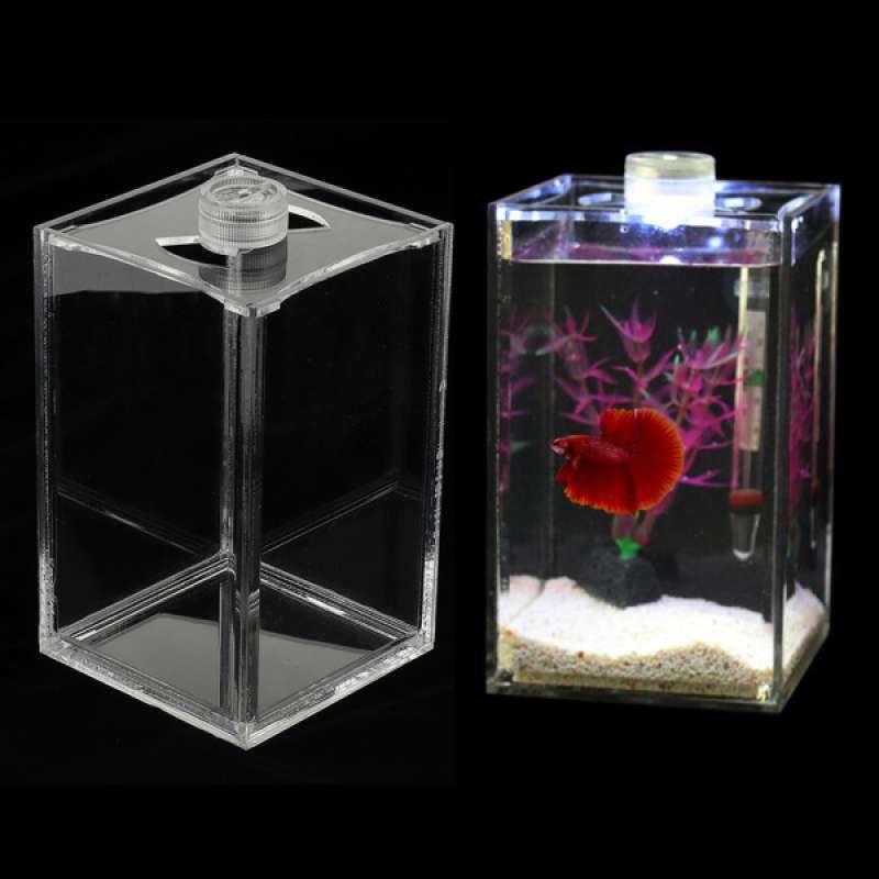 Jual 2pcs Led Lighting Aquarium Small Fish Tank Betta Tank Acrylic 10x10x16cm Online Januari 2021 Blibli