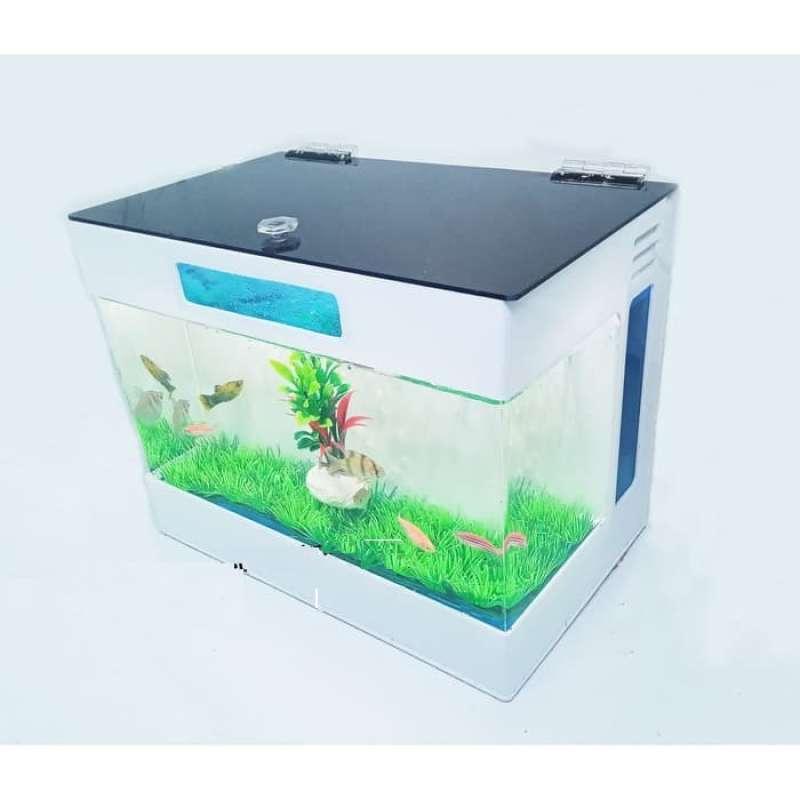 Jual Aquarium Mini Aquarium Akrilik Aquarium Cupang Aquarium Acrylic Online November 2020 Blibli Com