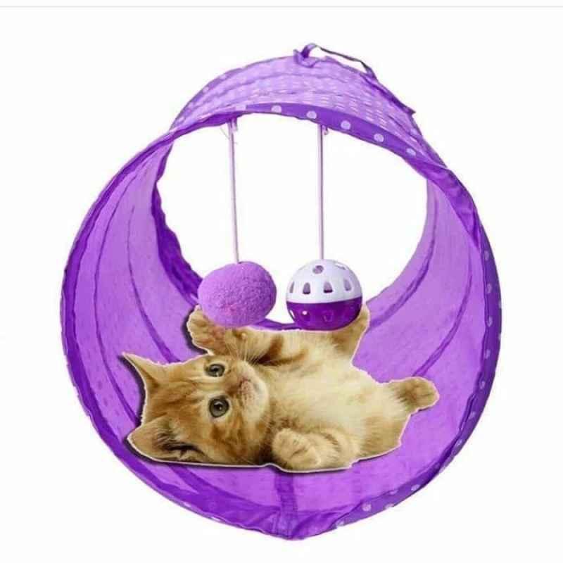 Mainan Kucing Lorong