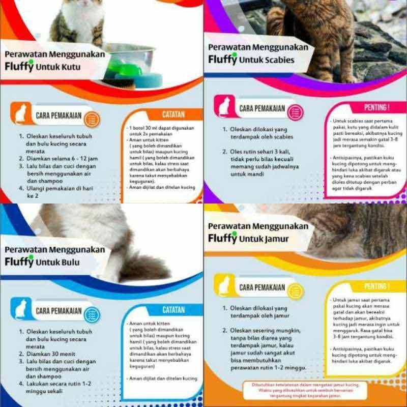 Jual Fluffy Magic Tonic For Cat Ampuh Basmi Kutu Jamur Scabies Pada Kucing Online Desember 2020 Blibli