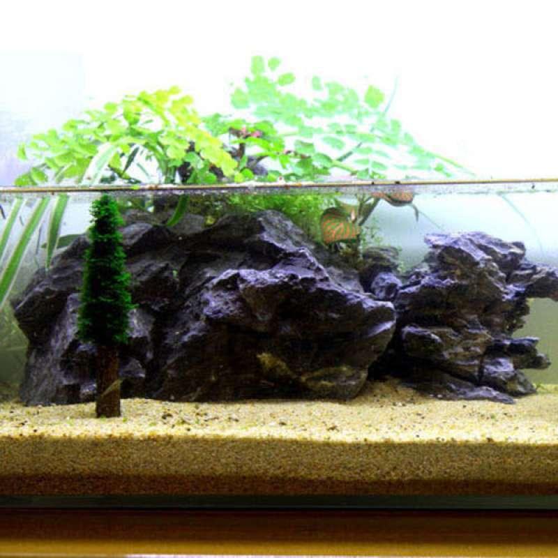Jual 5x Live Growing Moss Tree Plant Trunk Ornaments For Aquarium Fish Tank Decor Online Januari 2021 Blibli