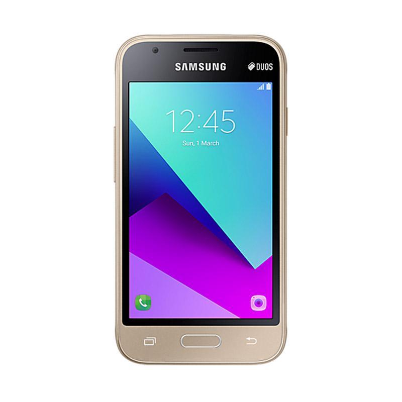 Samsung Galaxy V2 J106B Smartphone - Gold