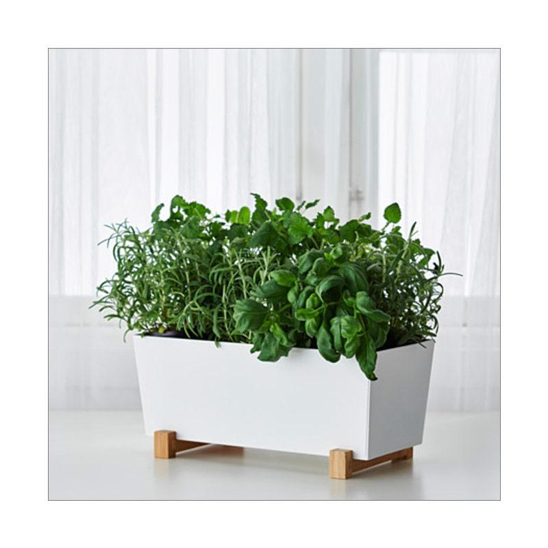 Jual Ikea Bittergurka Square Plant Pot Tanaman Putih 32 X 15 Cm Murah September 2020 Blibli Com