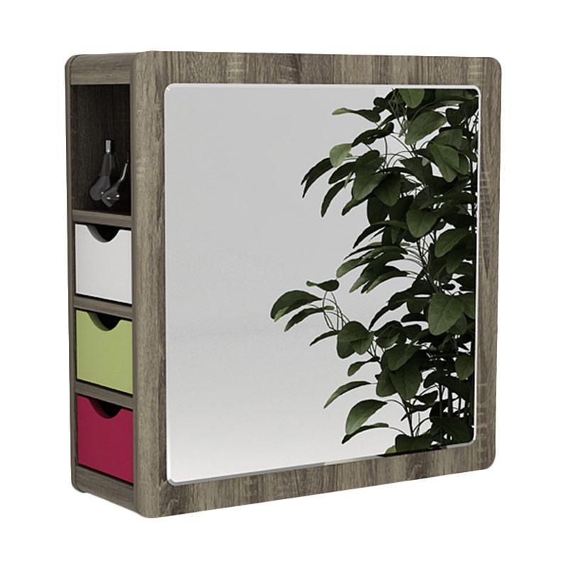 Prissilia Lafayette Hanging Mirror with Cabinet - Dark Brown