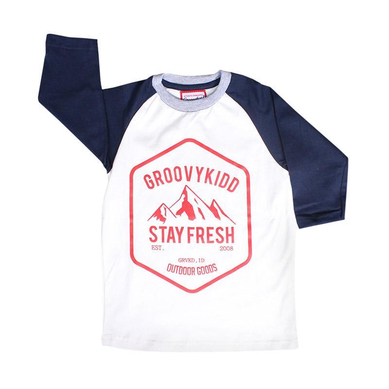 harga Groovykidd Reglan Stay Fresh T-shirt Atasan Baju Anak Laki-Laki Blibli.com