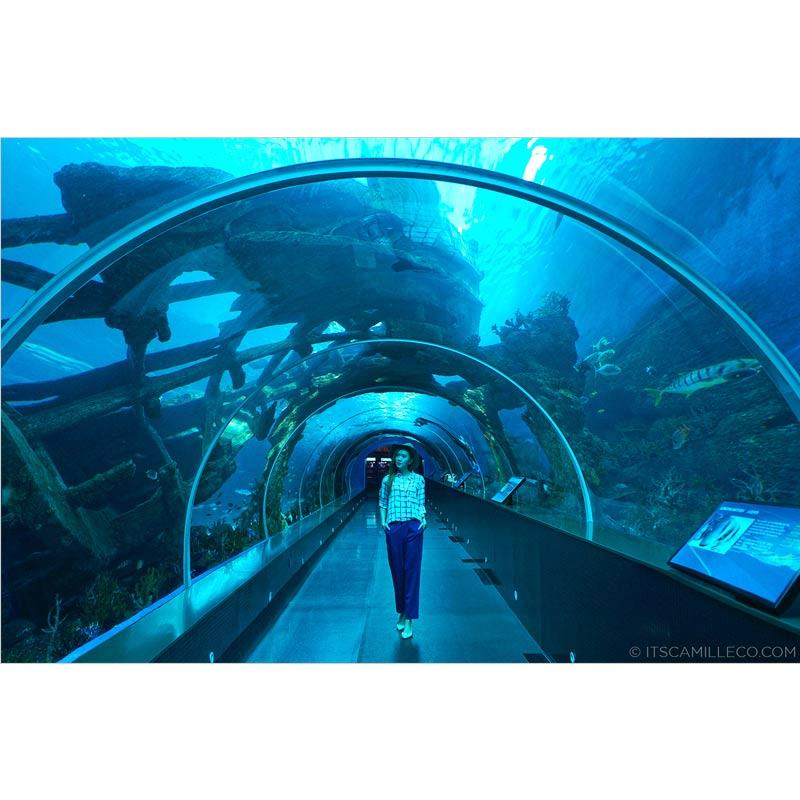 Travel Point Tour Bandung Sea Aquarium E Ticket Dewasa