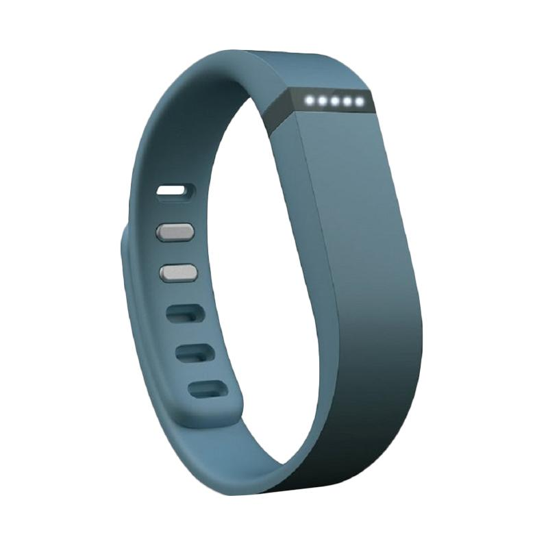 Fitbit Flex Slate Wireless Activity with Sleep Wristband