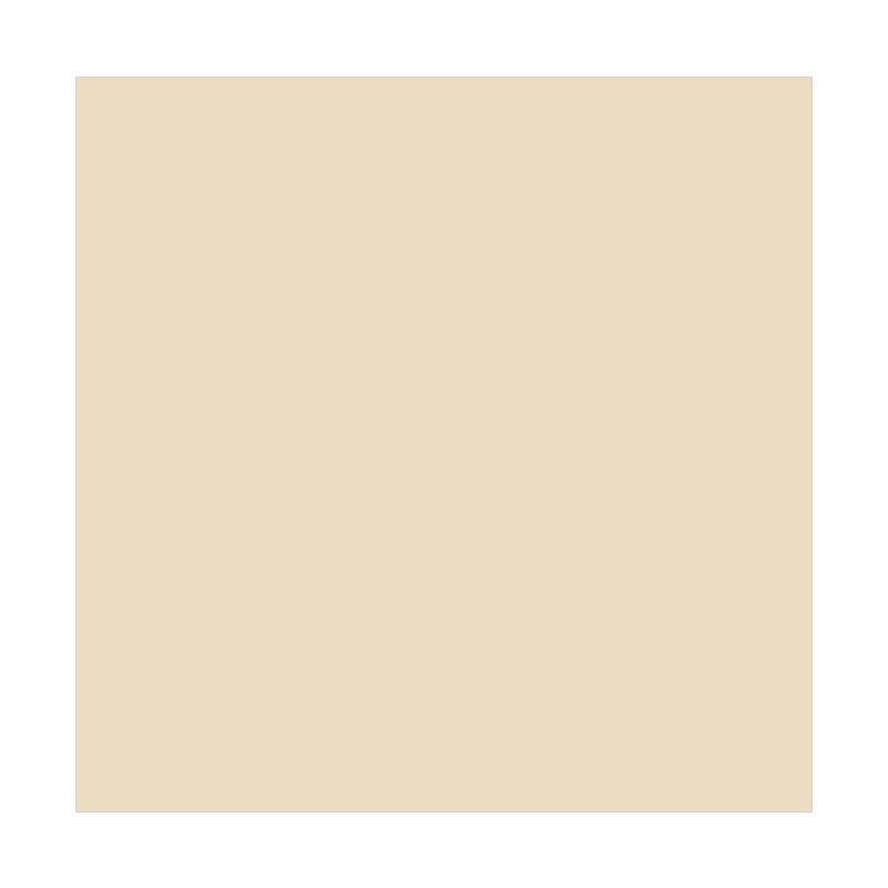 Jual Dulux Catylac Interior Tinting Cat Light Ivory 25 Kg Online Maret 2021 Blibli