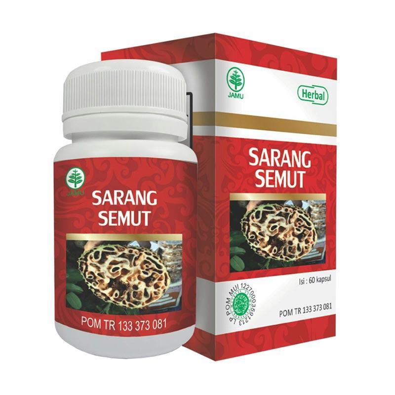 HIU Sarang Semut Herbal Untuk Stamina dll [60 Kapsul]