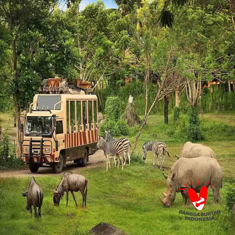 Bali Safari and Marine Park E Ticket Safari Explorer