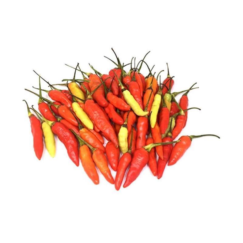 Jual Cari Sayur Cabe Rawit Merah Blitar 250 Gr Online Januari 2021 Blibli