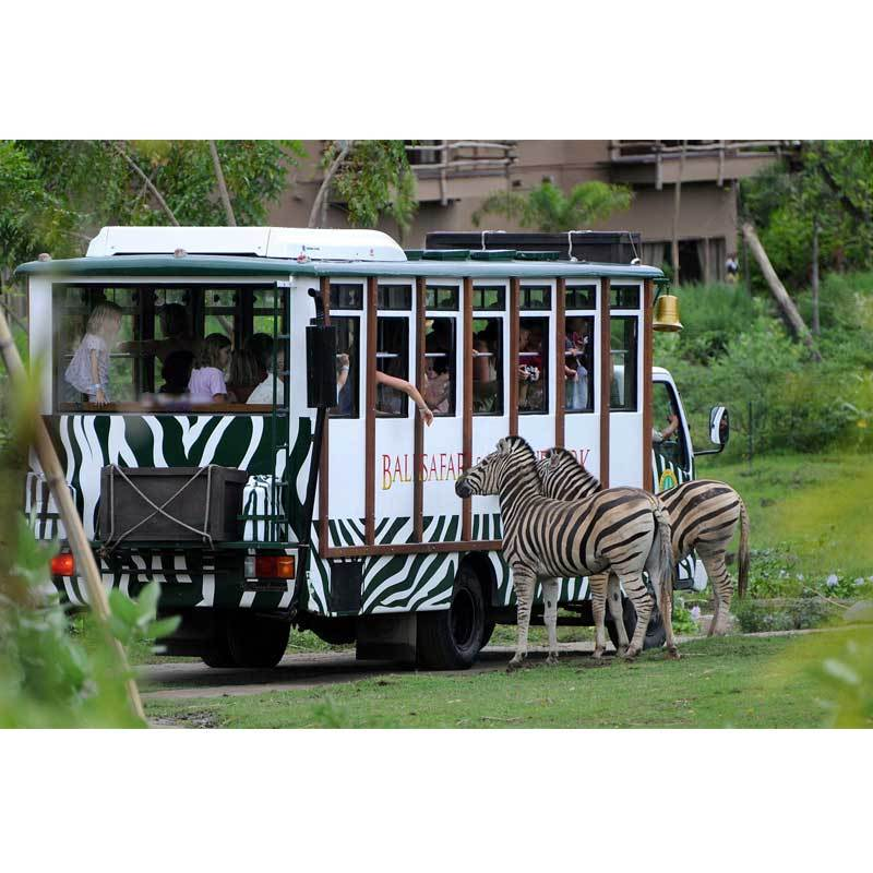 Paket Tour Bali Safari Full Day Tour