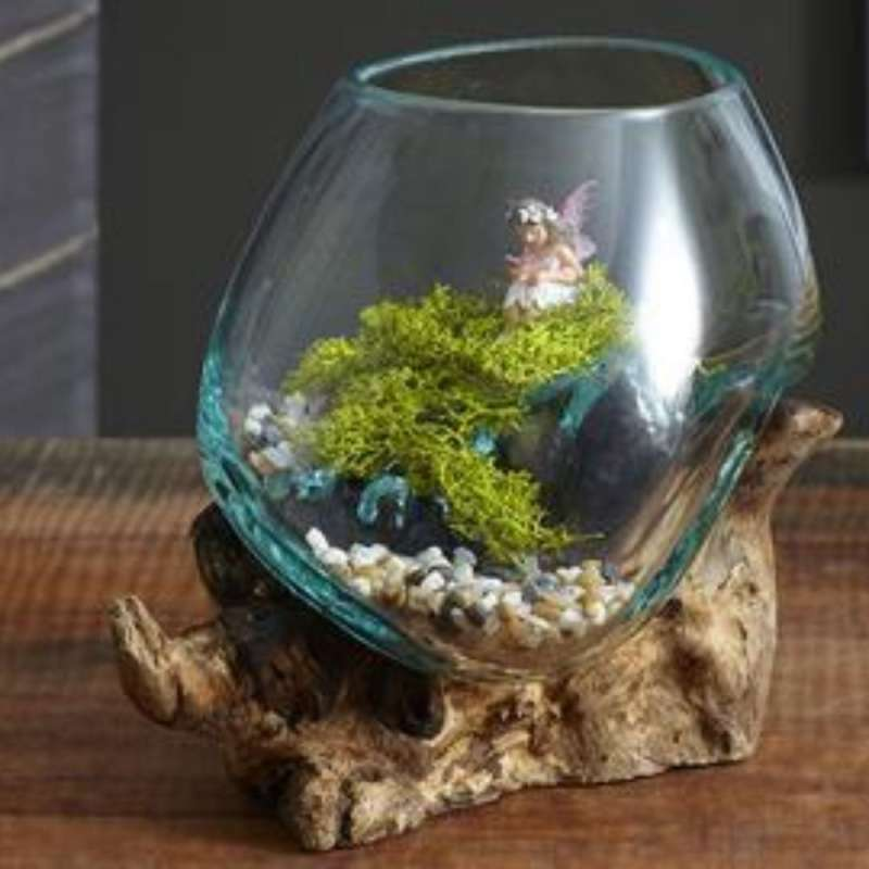 Jual Toko Aspri Aquarium Akuarium Terrarium Terarium Hiasan Kaca Cupang Betta Ikan Hias Glass On Wood Ukuran 20 Cm Online Desember 2020 Blibli