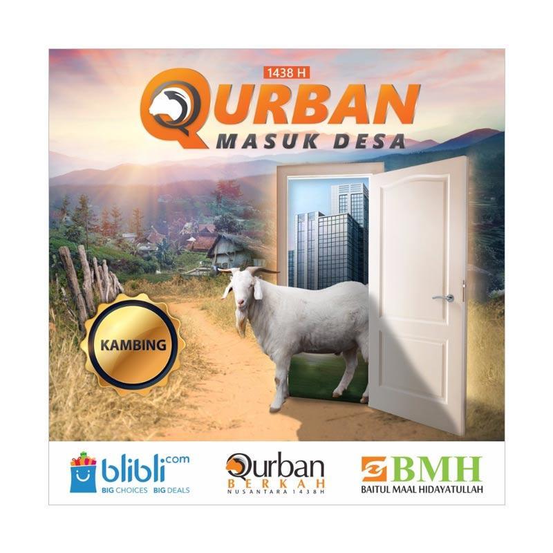 Qurban Kambing Reguler - BMH Berkah Nusantara 1438 H [Program Qurban Masuk Desa]
