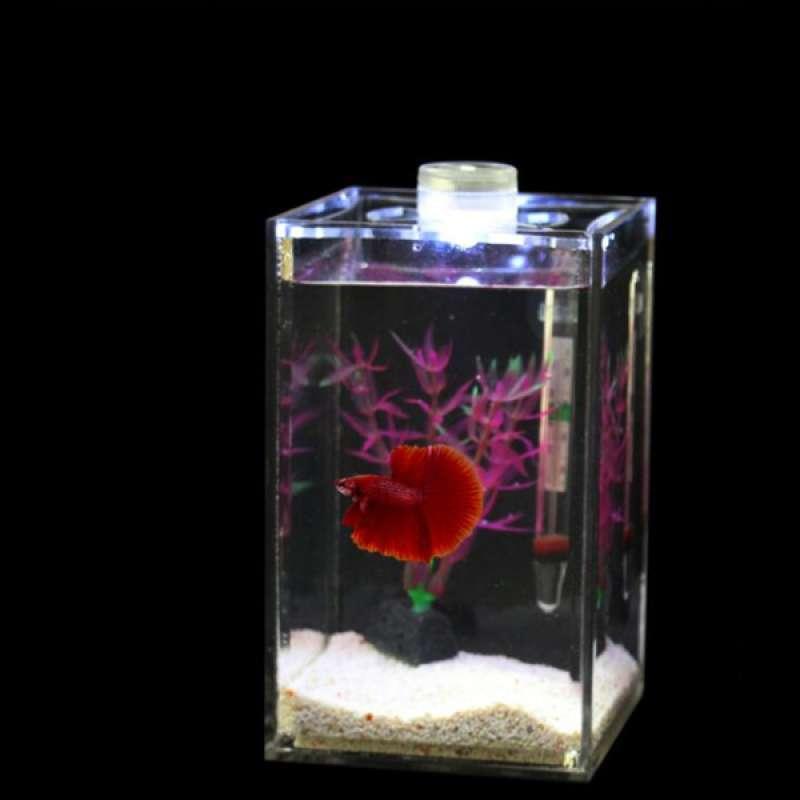 Jual Acrylic Transparent Aquarium Tropical Sea Aquatic Rumble Fish Small Led Tank Online Januari 2021 Blibli