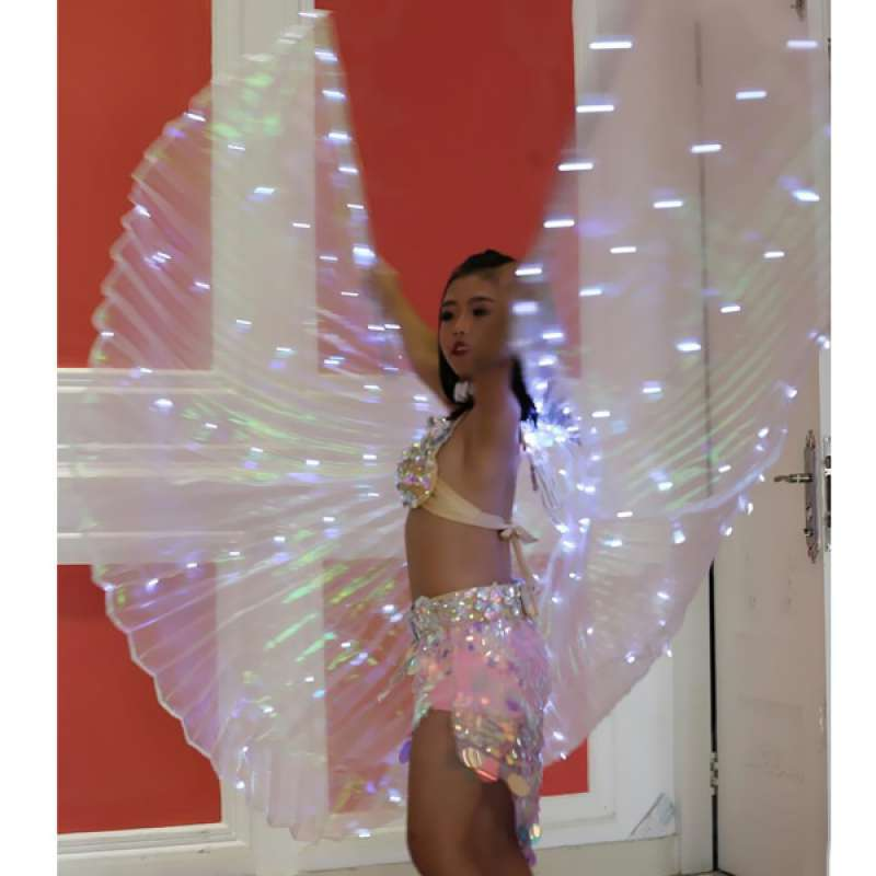Adults Belly Dance LED Isis Wings Glow Light Up Egyptian Performance Costume