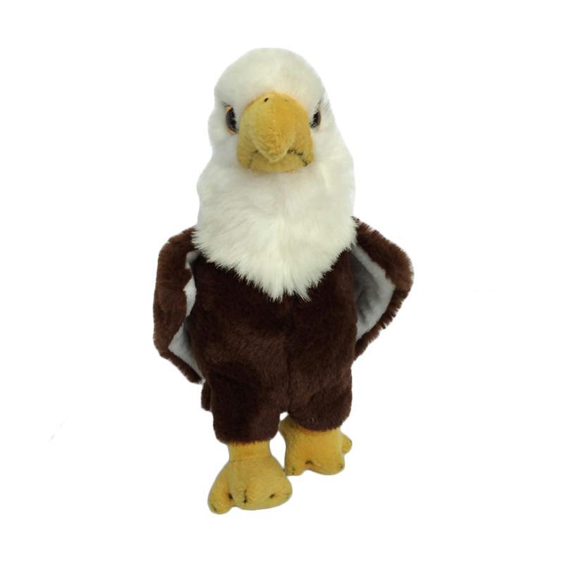 4400 Koleksi Gambar Burung Rajawali Jpg Gratis Terbaik