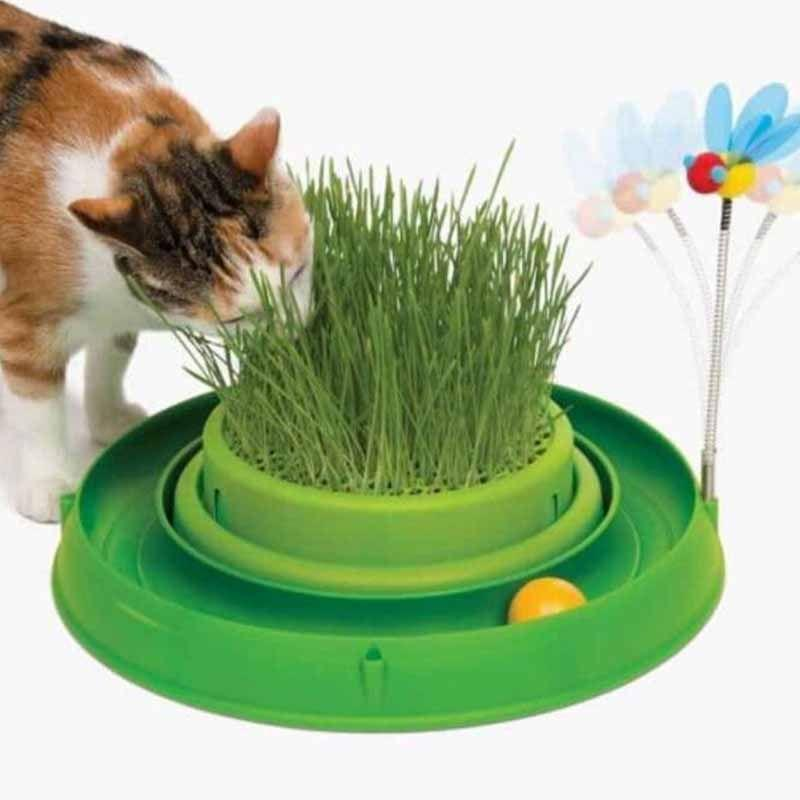 Mainan kucing Rumput kucing