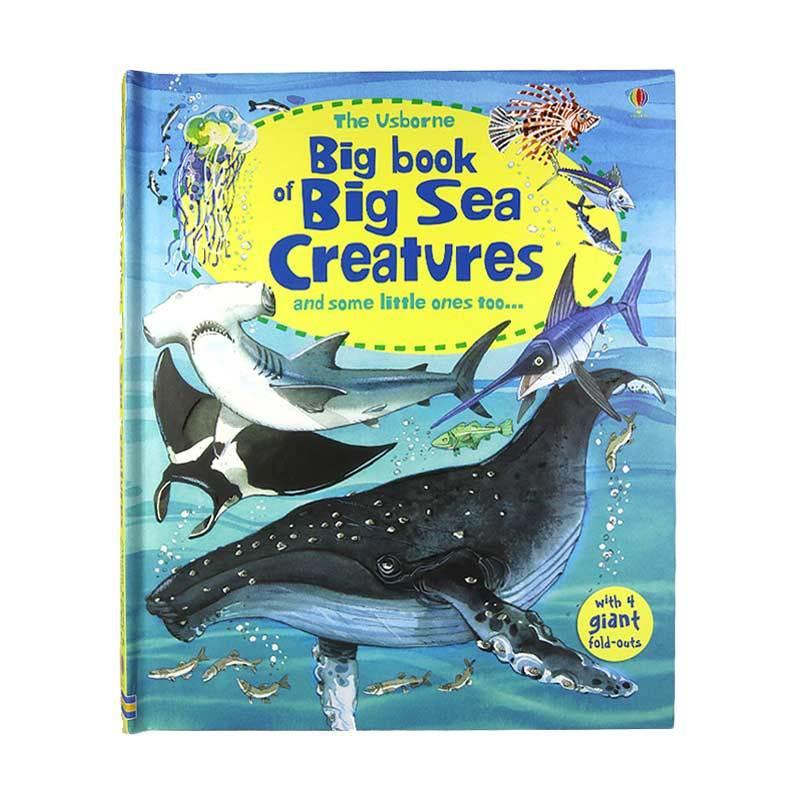 Usborne Books Big Book Of Sea Creatures Buku Edukasi