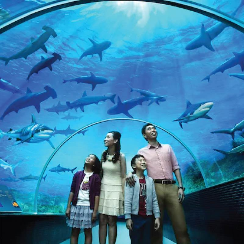 harga tiket sea aquarium Singapore
