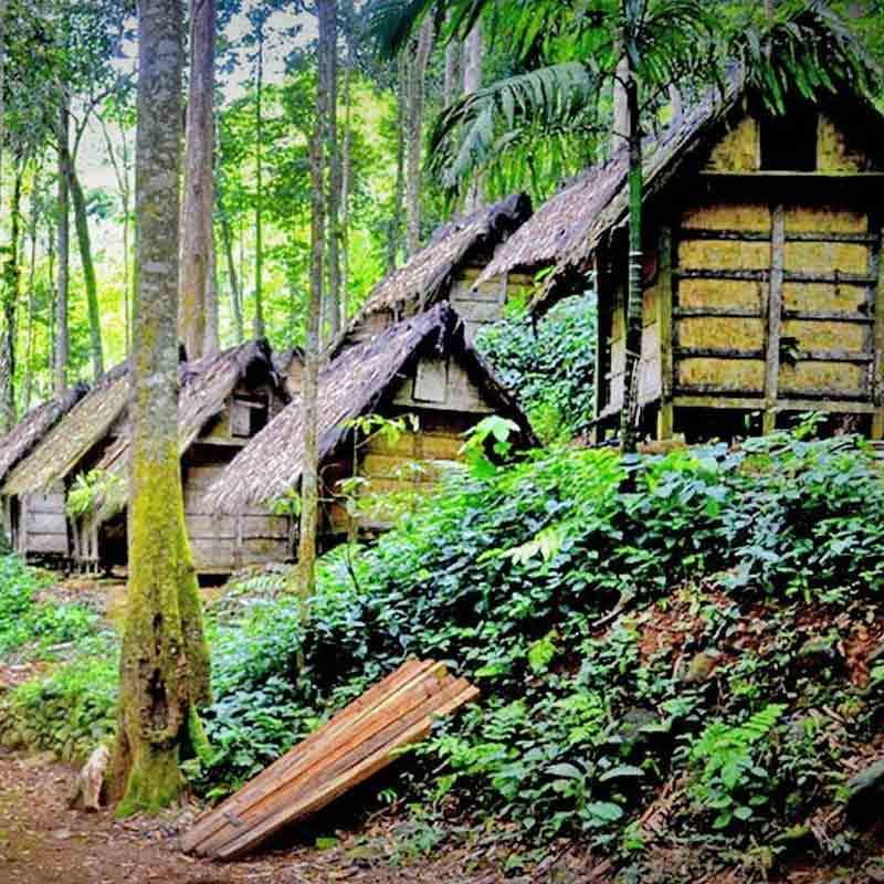 Kili Kili Adventure Private Trip Baduy Dalam Paket Tour Domestik