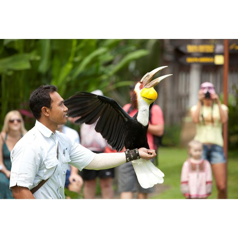 Bali Bird Park Flash Deal E Ticket