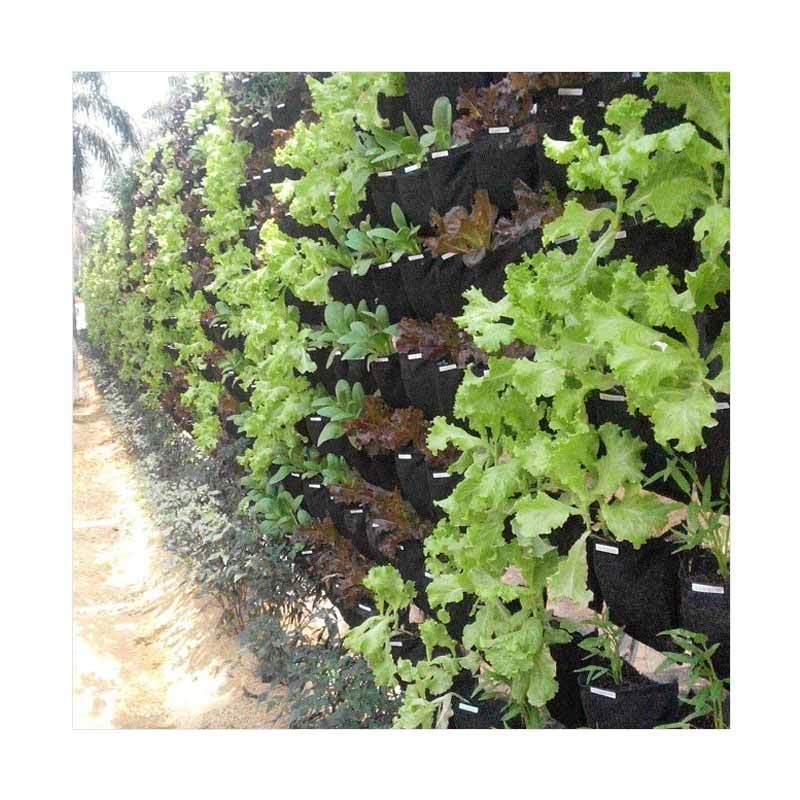 Forstra Vertical Garden Verticulture Kantung Tanaman Gantung