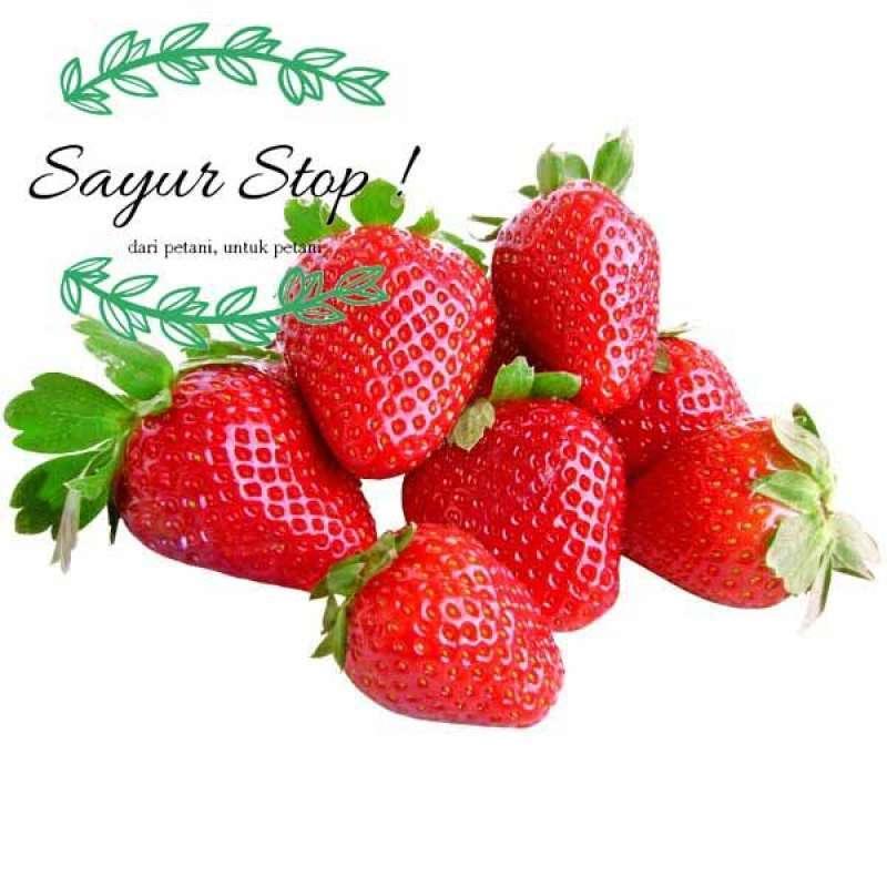 Sayur Stop Strawberry 1 pack