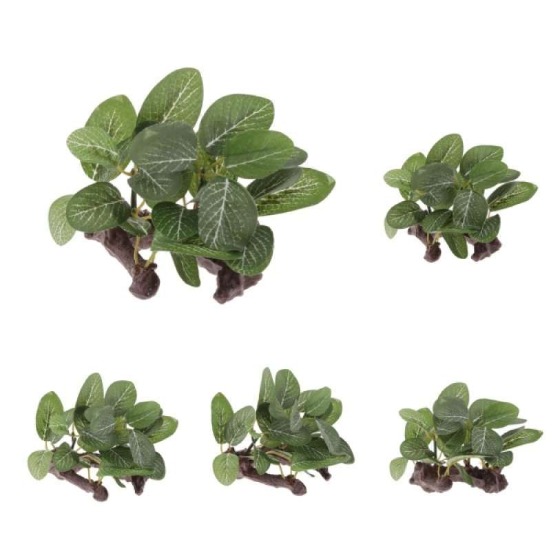 Jual 5 X Artificial Aquatic Plants Small Aquarium Plants Artificial Fish Tank Decorations For Household And Office Aquarium Simulation Hydroponic Plants Online Oktober 2020 Blibli Com