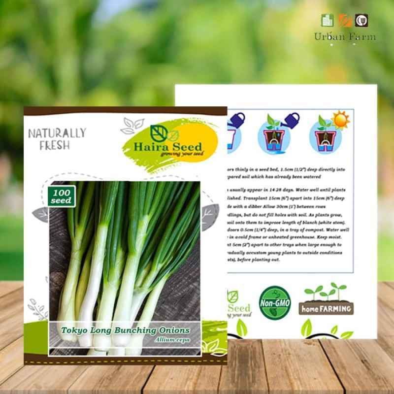 Jual Haira Seed Benih Daun Bawang Tokyo Long Bunching Benih Tanaman 100 Butir Online November 2020 Blibli Com