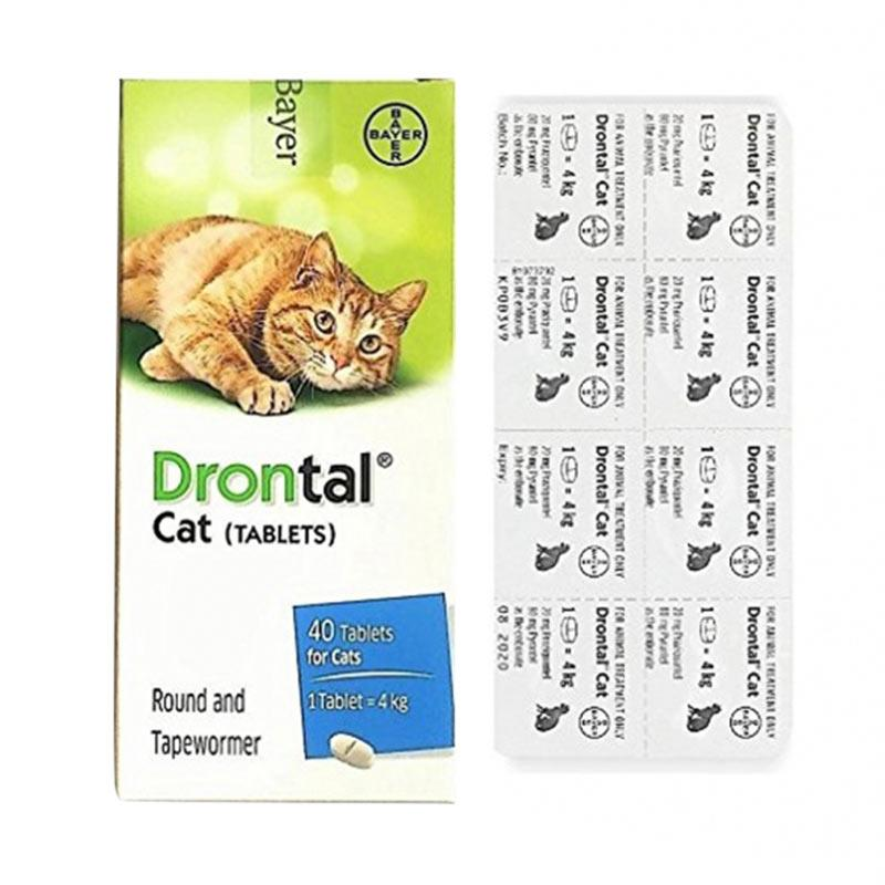 Bayer Drontal Cat Obat Cacing Untuk Kucing