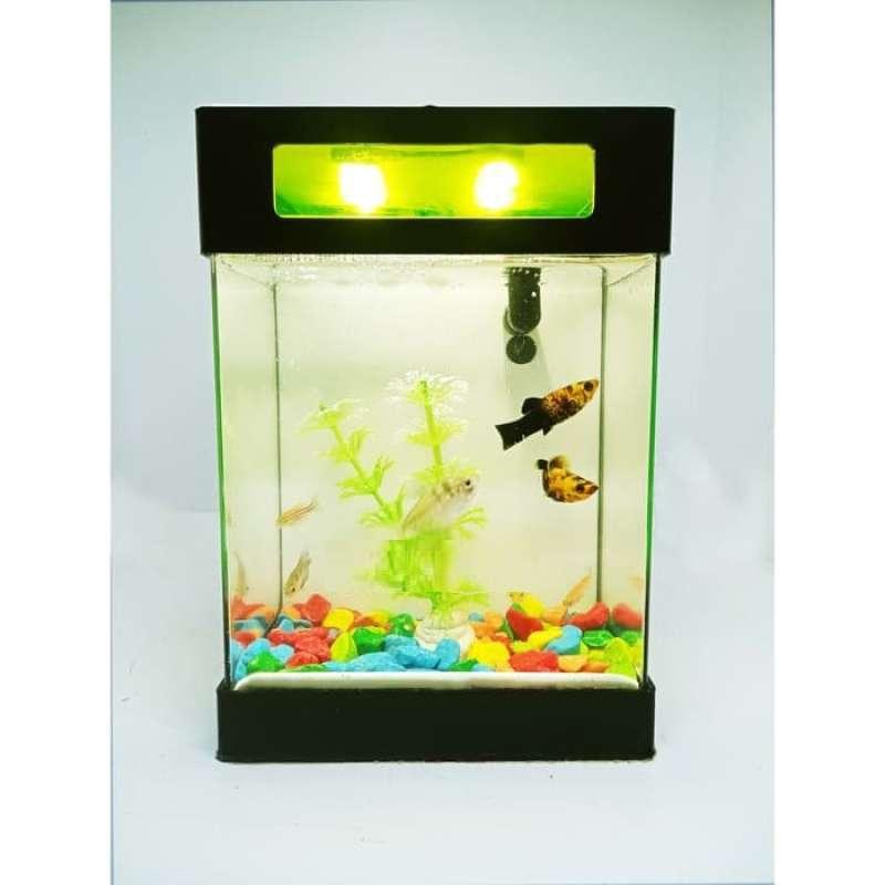Jual Akuarium Mini Akuarium Cupang Aquarium Mini Aquarium Cupang Online November 2020 Blibli Com