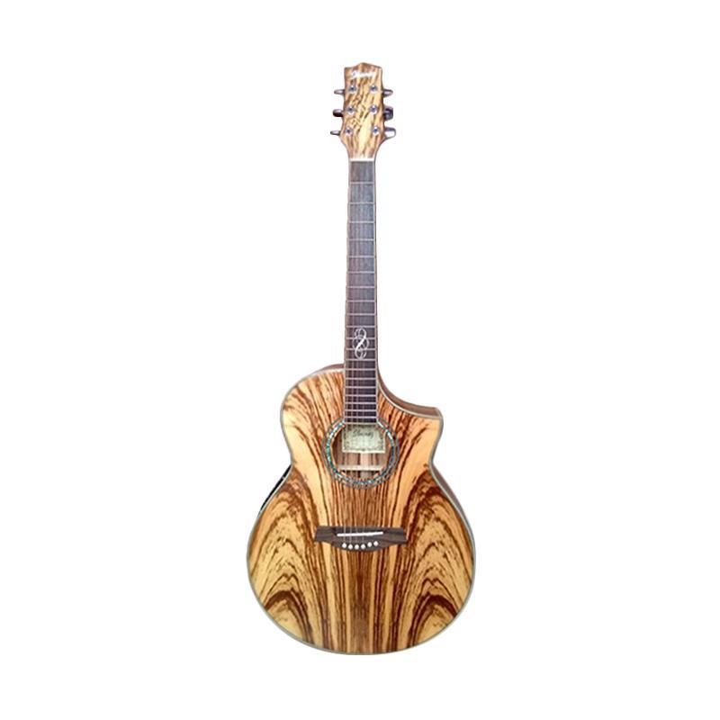Jual Ibanez EW200 Gitar Akustik Elektrik Online