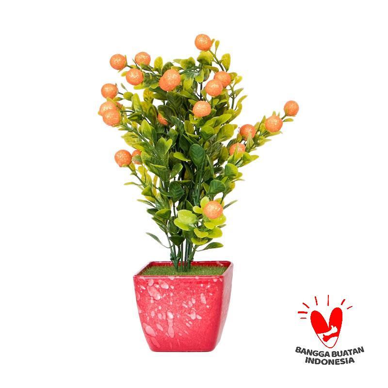 Jual Mendekor Honai Pots And Planters Online Harga