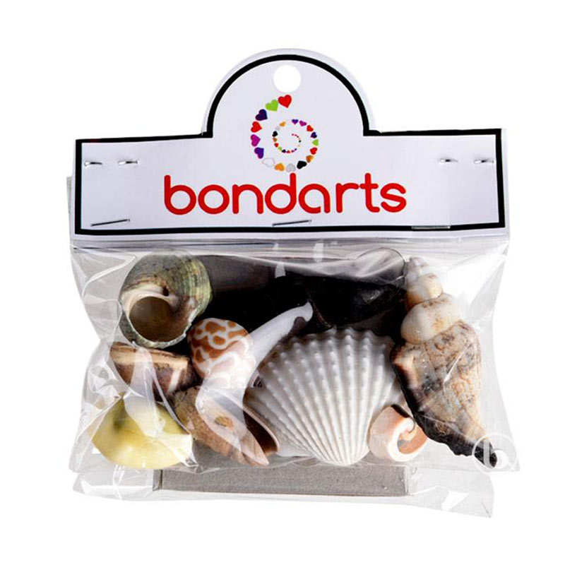 Bondarts Paket Kerang Hias [10 Jenis]