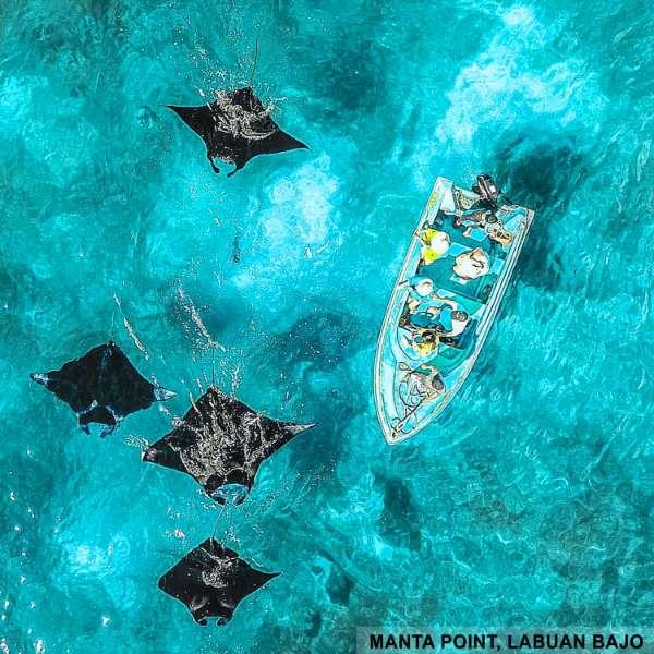 Jual Explore Labuan Bajo 4d3n Paket Private Tour Domestik Online Desember 2020 Blibli