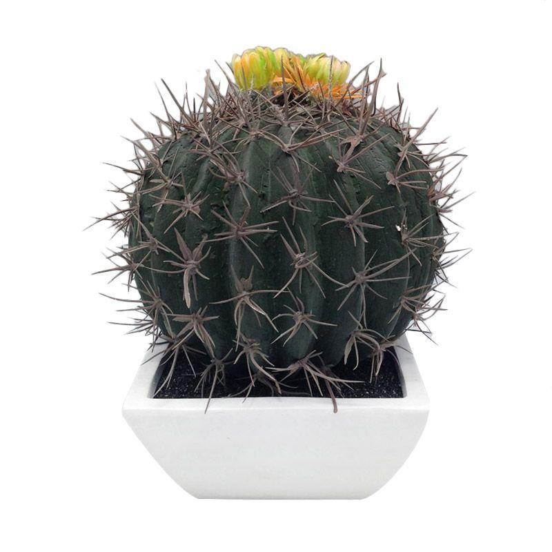Atria Ballca Artificial Cactus Multicolor Pajangan