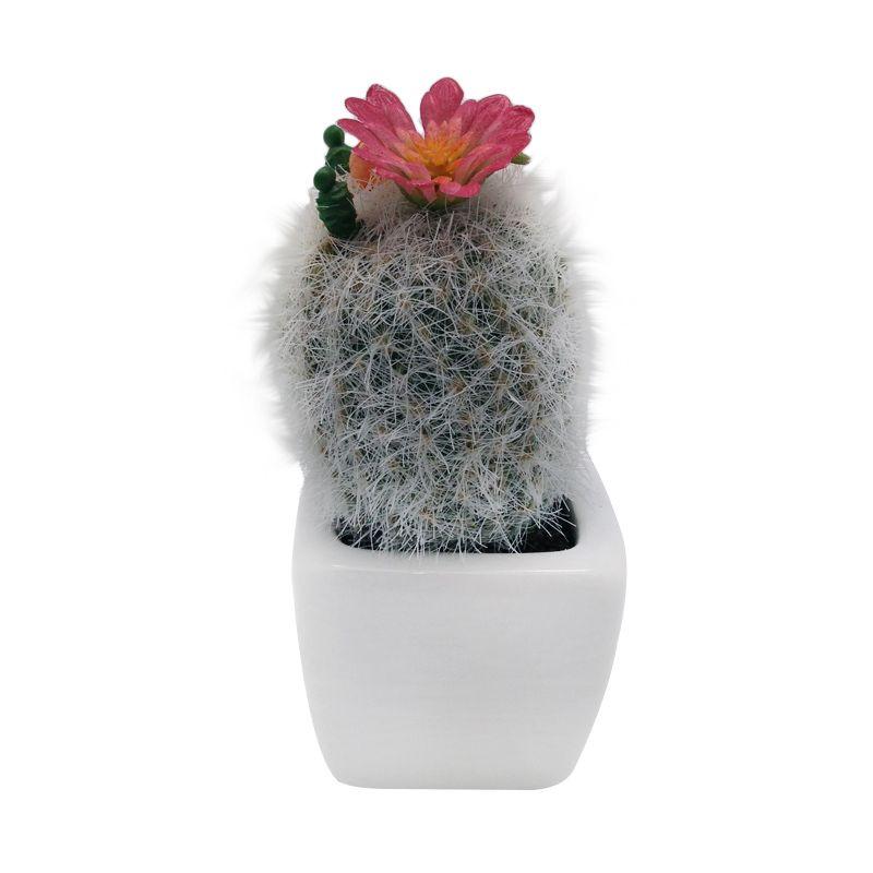 Atria Cleisto Artificial Cactus Multicolor Pajangan