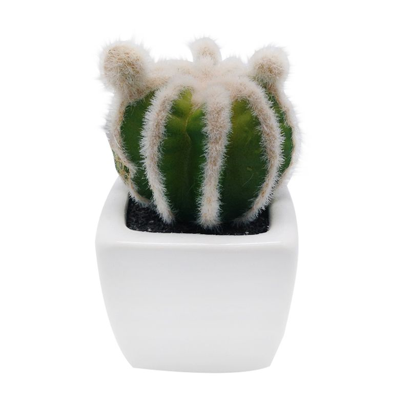 Atria Lenn Artificial Cactus Multicolor Pajangan