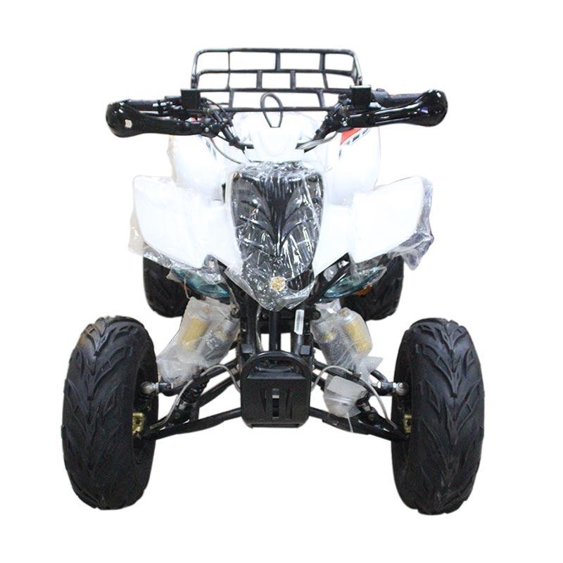 harga Bee Happy Spider 150 Sport ATV Motor - White Blibli.com